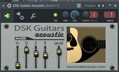 DSK Guitars Acoustic